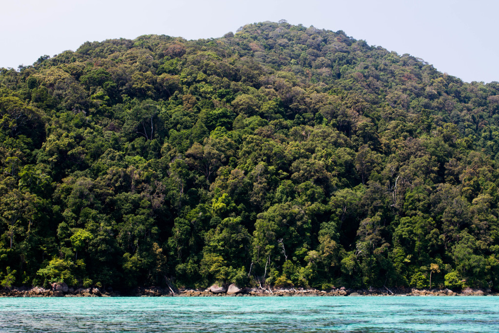 There are many beautiful snorkeling sites around the Surin Islands