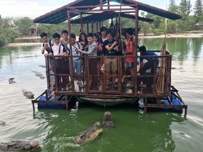 Chinese tourists feeding crocodiles in Chonburi, Thailand