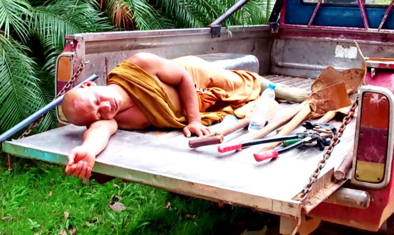 A monk napping in a truck