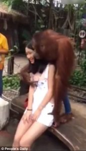 He kisses a Chinese tourist