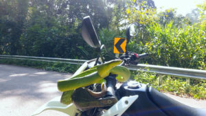 A motorcyclist was stunned after stopping to avoid a snake in the road - which then slithered onto his handlebars